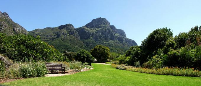 Picnic spot in Kirstenbosch Gardens