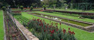 Picnic spot at Durban Botanic Gardens
