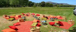 Picnic spot at Noordhoek Common
