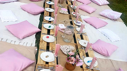 Bridal Baby Shower Picnic Packages Dial A Picnic Catering Company