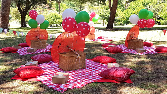 Kids Party Picnic