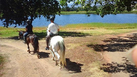 Durbanville Horse Ride Picnic