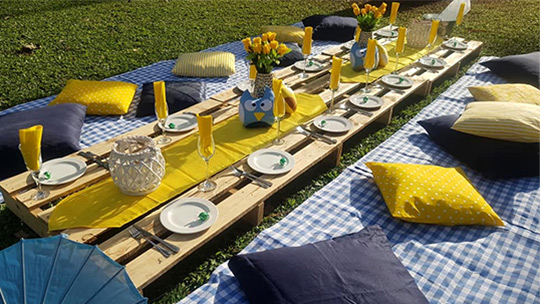 Picnic Rental Items