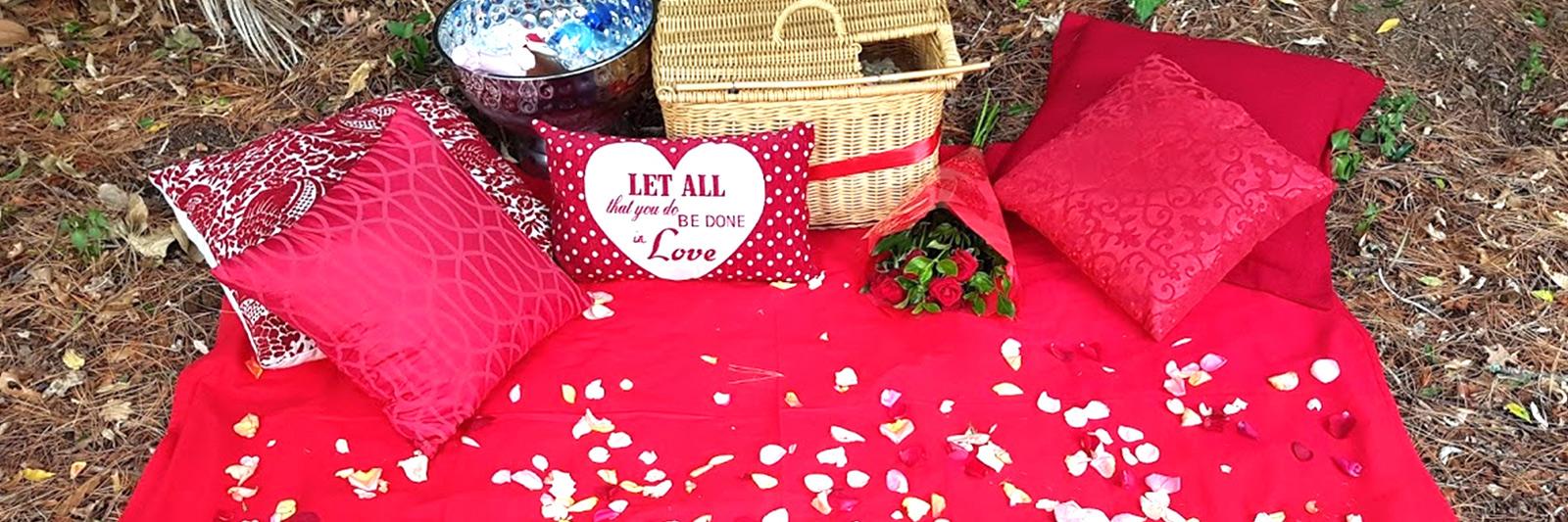 Romantic Valentines Picnic